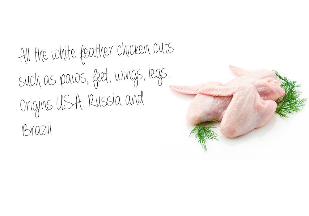 All the white feather chicken cuts such as paws, feet, wings, legs… Origins USA, Russia and  Brazil